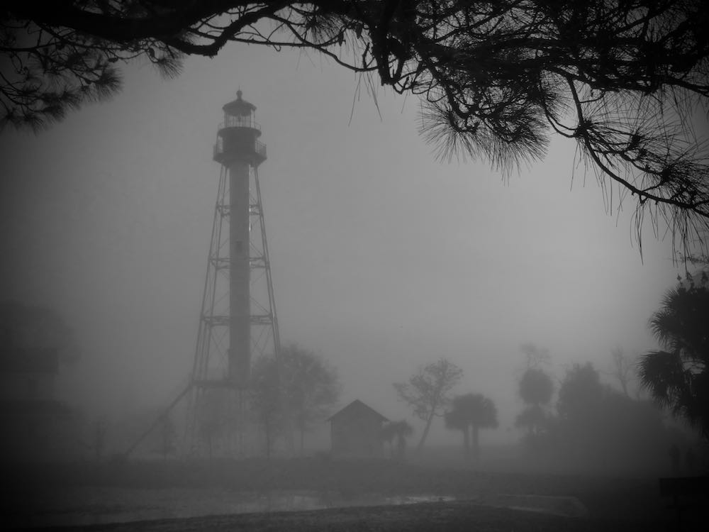 lh_fog.jpeg